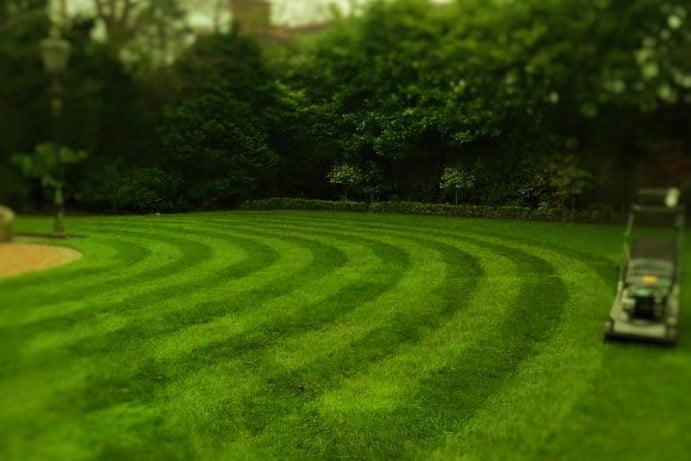 Stripes on lawn