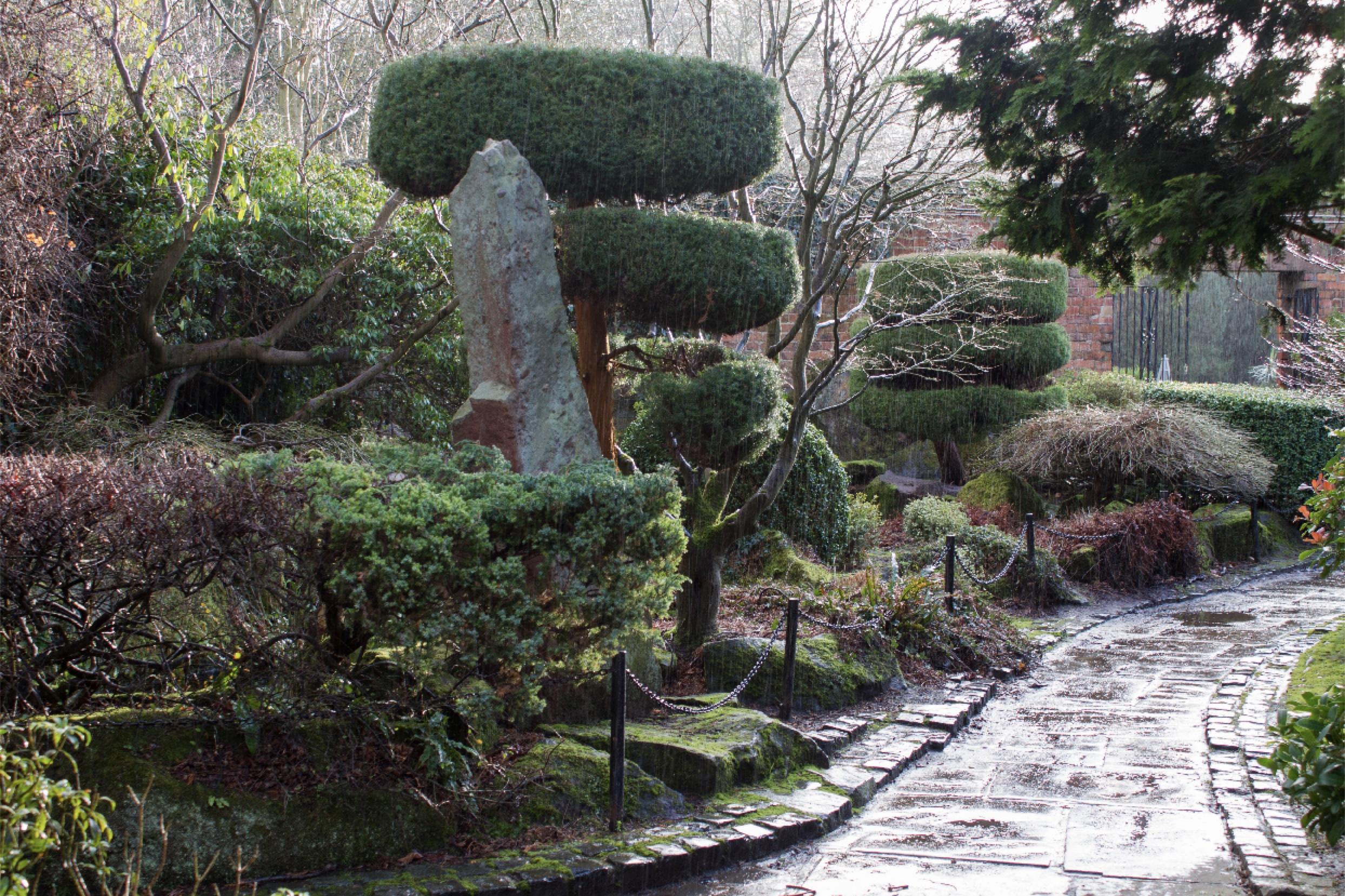 image of a japanese garden